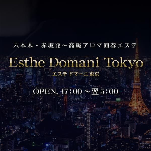 エステ ドマーニ東京 六本木・赤坂