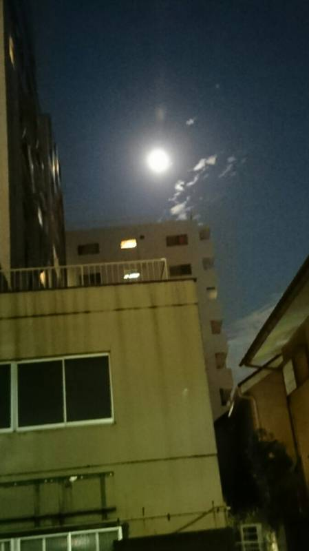 今夜は満々満月👍