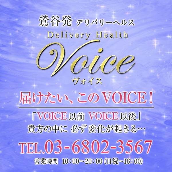 VOICE~ヴォイス~